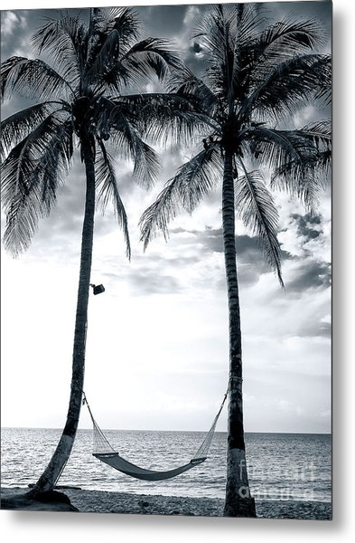 Island Nap Time At San Andres Island Metal Print by John Rizzuto