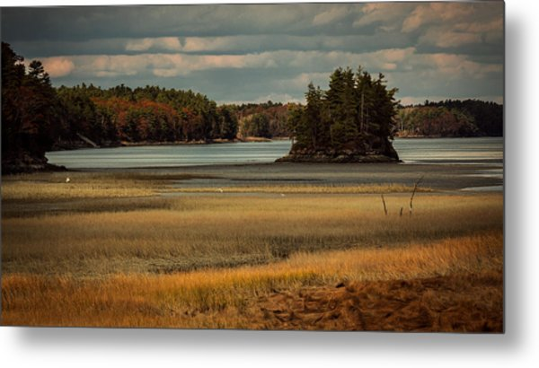 Island On The Lake Metal Print