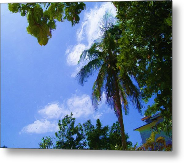 Island Palm Metal Print