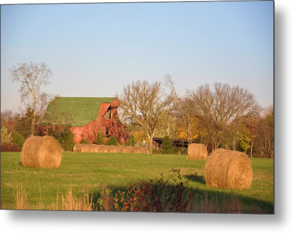 It's A Sunny Day Metal Print by Jan Amiss Photography