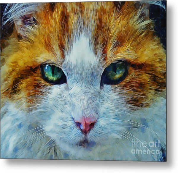 Its In The Eyes Metal Print
