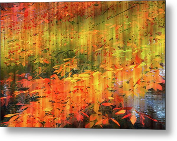 Metal Print featuring the photograph It's Nature's Way by Jessica Jenney