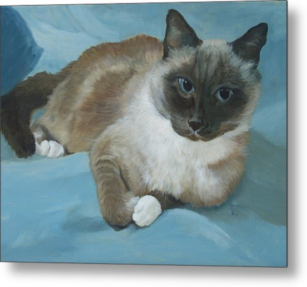 Itty Bitty Kitty Metal Print by Audrie Sumner