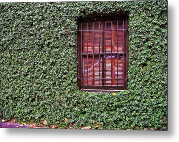 Ivy House Metal Print by JAMART Photography