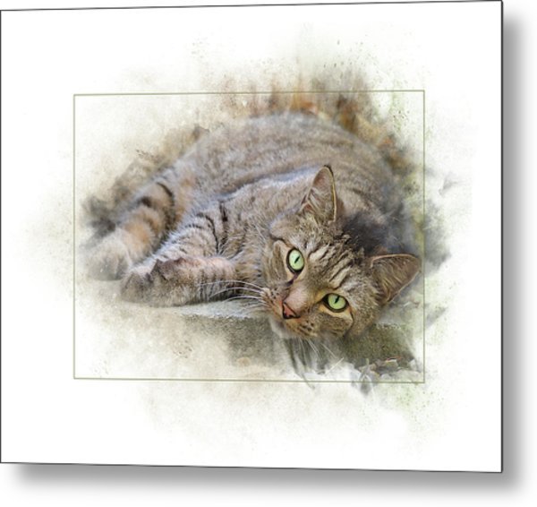 Metal Print featuring the digital art Jack by Sue Collura