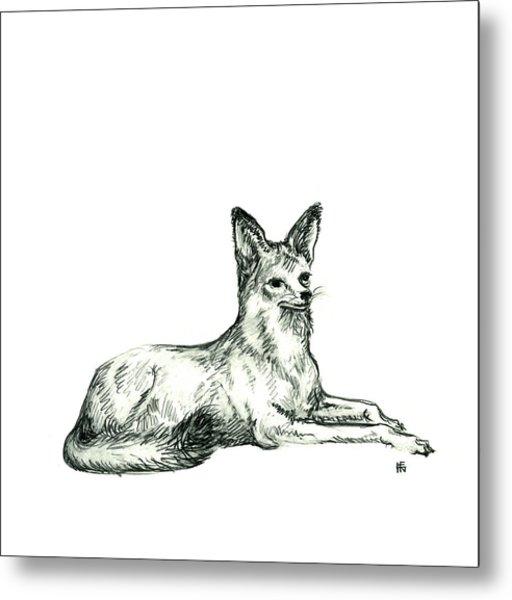 Jackal Sketch Metal Print