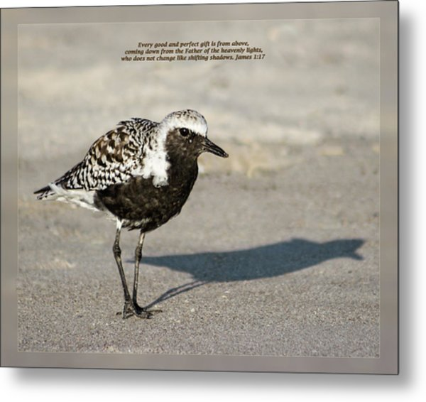 Metal Print featuring the photograph James 1 17 by Dawn Currie