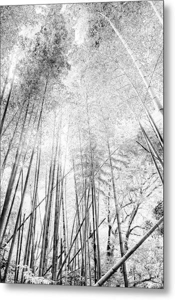 Japan Landscapes Metal Print