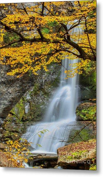 Japanese Falls Metal Print