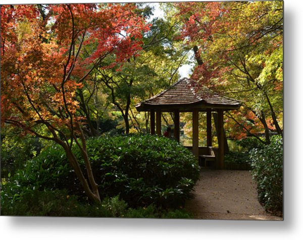 Metal Print featuring the photograph Japanese Gardens 2577 by Ricardo J Ruiz de Porras