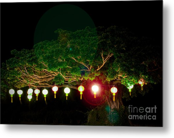 Japanese Lantern Tree Metal Print