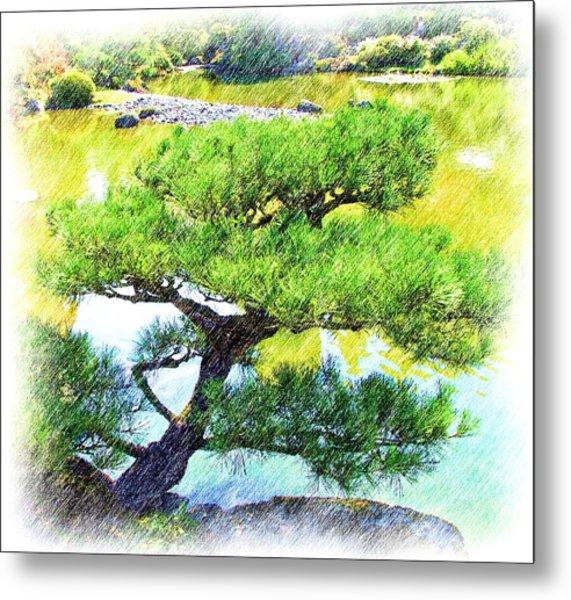 Japanese Tree Metal Print by Ralph Liebstein