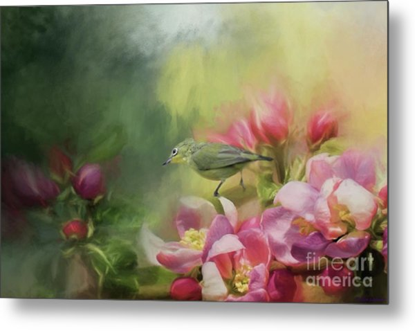 Japanese White-eye On A Blooming Tree Metal Print