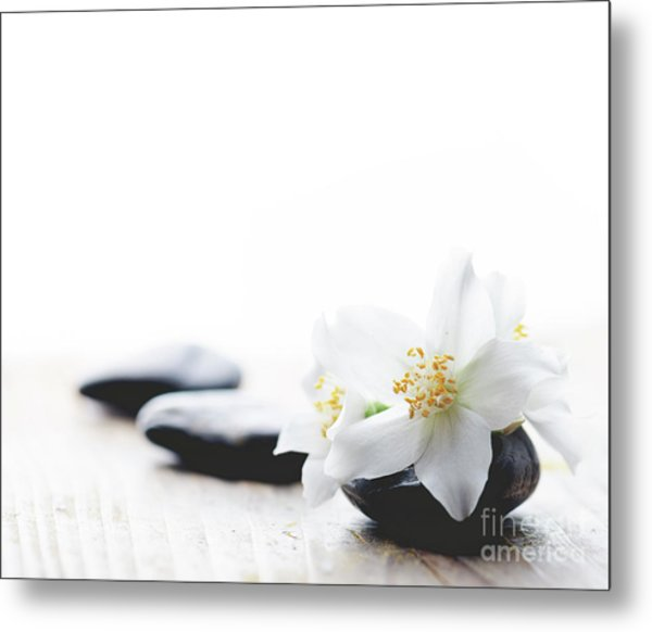 Jasmine Flower On Spa Stones Metal Print