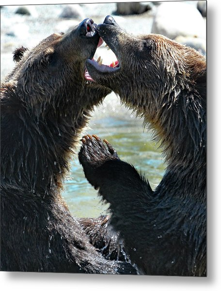 Jaws And Claws Metal Print