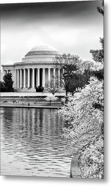Jefferson Memorial Cherry Blosum Time Metal Print