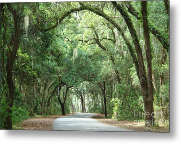 Jekyll Island Arches Metal Print by Frances  Dillon
