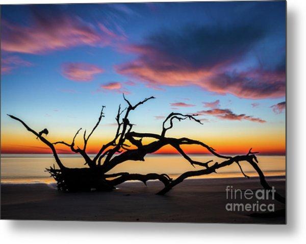 Jekyll Island Sunrise On Driftwood Beach Metal Print