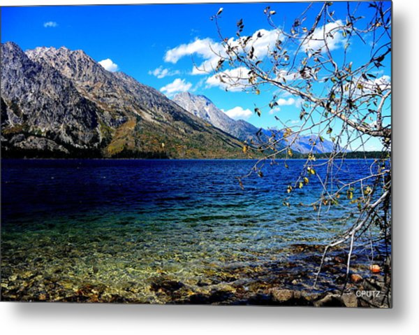 Jenny Lake Metal Print by Carrie Putz