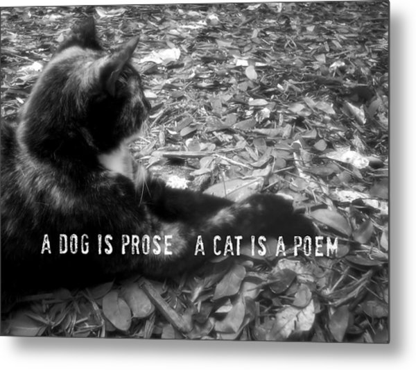 Jesk Quote Metal Print by JAMART Photography