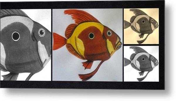 John Dory Collage Metal Print
