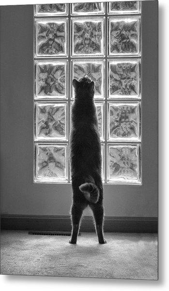 Joseph At The Window Metal Print