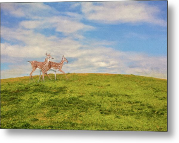 Journey To The Top Of The World Metal Print
