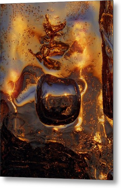 Metal Print featuring the photograph Jump by Sami Tiainen