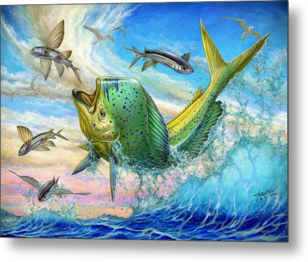 Jumping Mahi Mahi And Flyingfish Metal Print