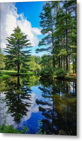 June Day At The Park Metal Print