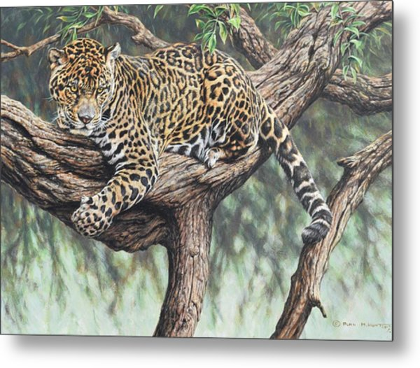 Jungle Outlook Metal Print