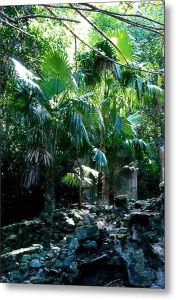Jungle Sun  Metal Print