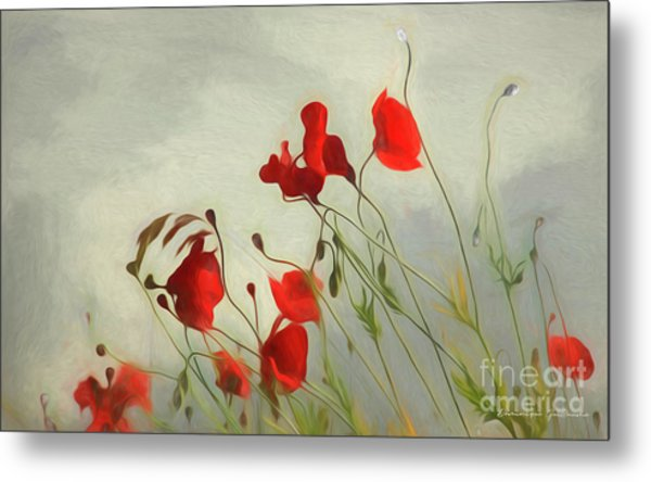 Just Some Poppies Metal Print