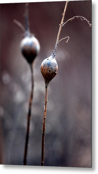 Just The Two Of Us Metal Print by Russell Styles