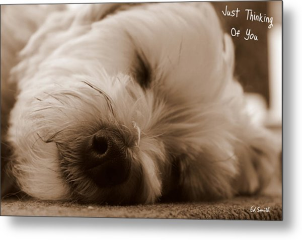Just Thinking Of You Metal Print