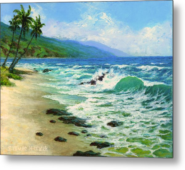 Kanaha Beach Metal Print by Steven Welch