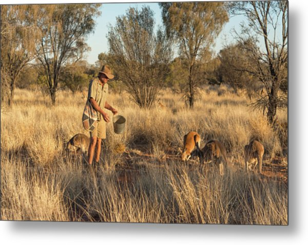Kangaroo Sanctuary Metal Print