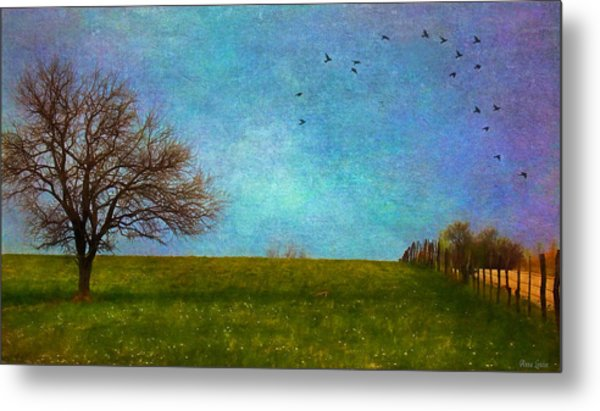 Kansas Early Spring Prairie Metal Print