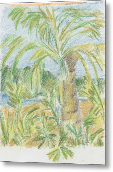 Kauai Palms Metal Print