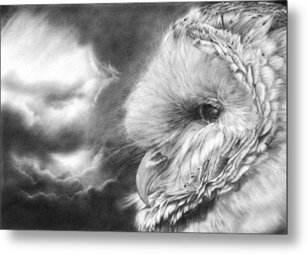 Keeper Of Secrets Metal Print