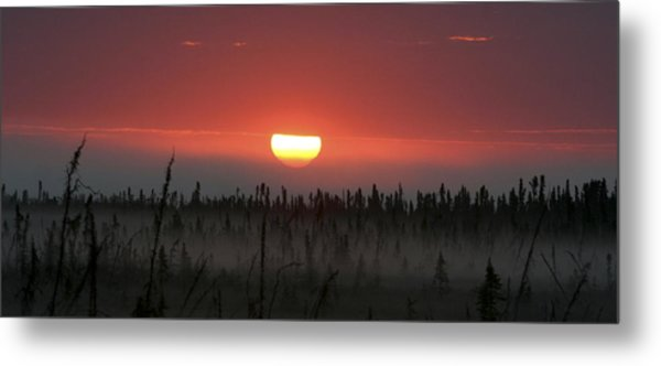 Kenai Peninsula Early Sunrise Metal Print by Mary Gaines