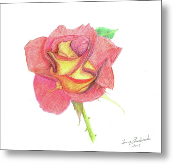 Ketchup And Mustard Rose Metal Print