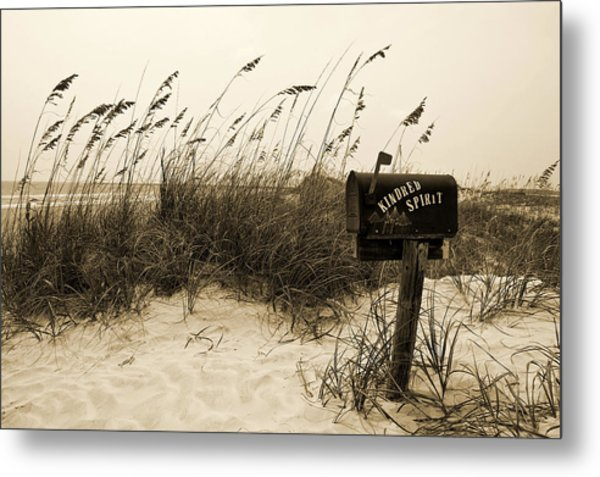Kindred Spirit Metal Print by William Haney