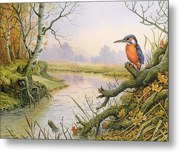 Kingfisher  Autumn River Scene Metal Print