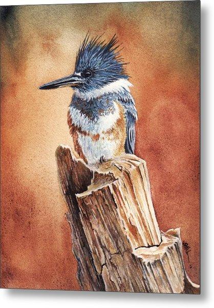 Kingfisher I Metal Print