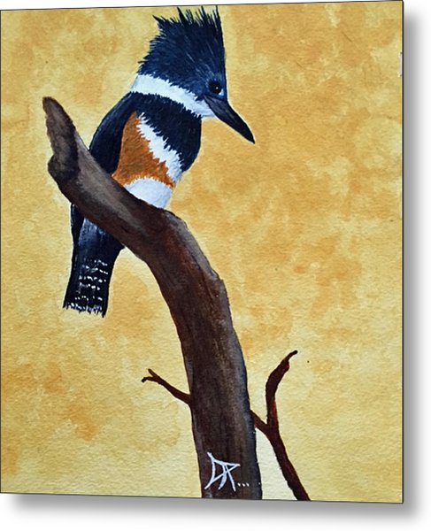 Kingfisher No. 1 Metal Print