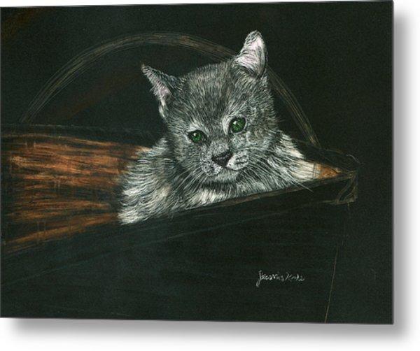 Kitten In A Basket Metal Print by Jessica Kale