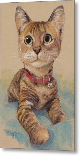 Kitten On The Loose Metal Print