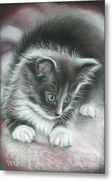 Kitten Metal Print by Valentina Vassilieva
