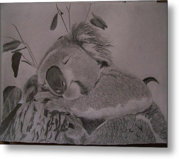 Koala Bear Sleeping Original Pencil Sketch By Pigatopia Metal Print